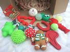 CHRISTMAS DOG TOY SET FOR SMALL DOGS TOY DOGS & PUPPIES X 15 FESTIVE FAVOURITES